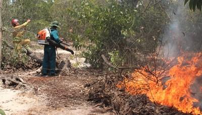 Quảng Nam: Cháy rừng phòng hộ, hàng trăm người tham gia dập lửa