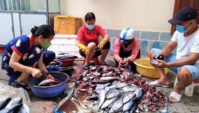 Quảng Ngãi: Hỗ trợ các tỉnh phía Nam 8 tỷ đồng phòng, chống dịch