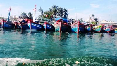 Quảng Nam: Kêu gọi hơn 500 tàu thuyền di chuyển khỏi vùng ảnh hưởng của bão số 5