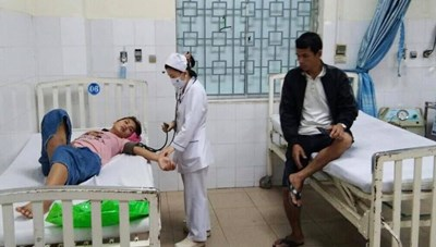 Quảng Ngãi: Ăn nấm rừng 8 người bị ngộ độc