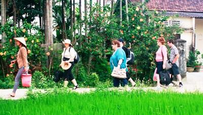 Quảng Nam: Bàn giải pháp mở cửa đón khách du lịch