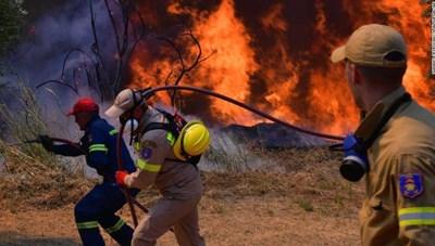 Cháy rừng: Lỗi do con người hay biến đổi khí hậu?