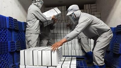 Cà Mau: Hỗ trợ 10 tấn tôm cho người dân TP Hồ Chí Minh
