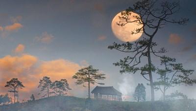 Mùa trăng thương nhớ