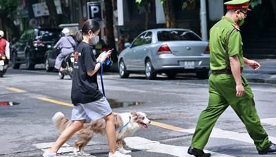 Dắt chó đi dạo khi Hà Nội giãn cách xã hội, cô gái trẻ bị phạt 2 triệu đồng