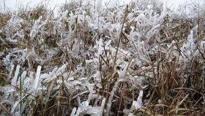 Rét đậm tăng cường, vùng núi cao có khả năng xảy ra mưa tuyết, băng giá