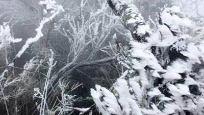 Vùng núi cao dưới 0 độ, có khả năng xảy ra mưa tuyết, băng giá