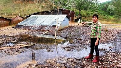 Quảng Nam: San ủi mặt bằng gây vùi lấp nhà dân