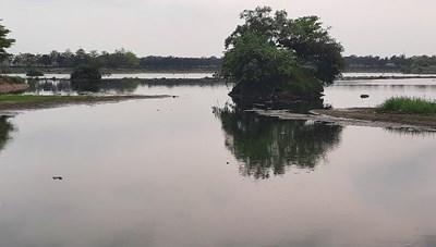 Hồ điều hòa gây ô nhiễm