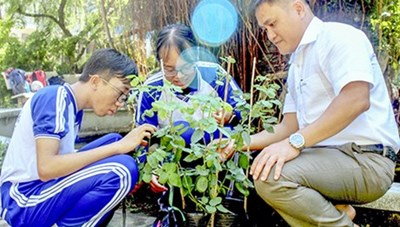 Học sinh lớp 11 sáng tạo phần mềm nhận diện khoa học về thực vật