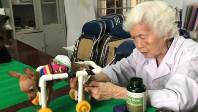 PGS.TS Phạm Thị Xuân Vân: Gần 90 năm tâm huyết với 'Phòng khám thú y cộng đồng'