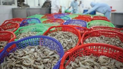 Cơ hội mới cho thủy sản Việt Nam