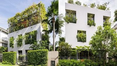 [ẢNH] Căn nhà giống như công viên thu nhỏ với đủ loại cây bên trong ở TP HCM