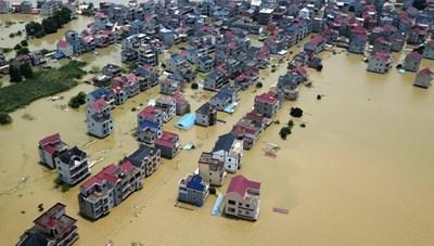 Chuyên gia Mỹ: Đê điều của Trung Quốc làm trầm trọng lũ lụt