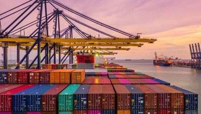 Tạo thuận lợi xuất khẩu hàng hóa sang Newzeland