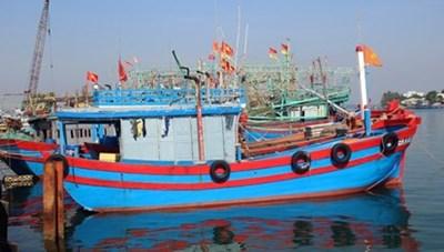 Cà Mau: Hỗ trợ cước thuê bao dịch vụ giám sát hành trình tàu cá