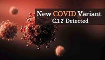 Biến thể C.1.2 của SARS-CoV-2