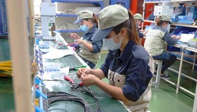 TP Hồ Chí Minh từng bước mở cửa