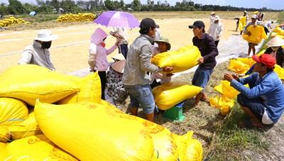 Nông sản Việtvà chặng đường mới