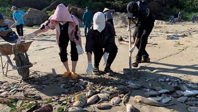 Quảng Ngãi: Người nuôi cá lồng bè thiệt hại nặng do mưa bão