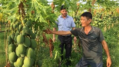 Khi nông dân sản xuất công nghệ cao