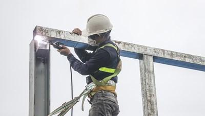 Nỗ lực khôi phục thị trường lao động