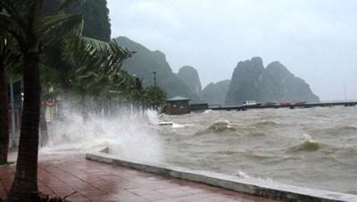 Sẵn sàng ứng phó với vùng áp thấp có khả năng mạnh lên thành áp thấp nhiệt đới