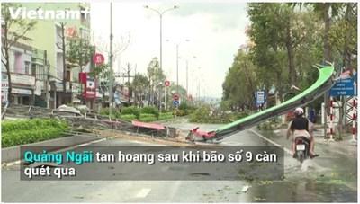 [VIDEO] Quảng Ngãi tan hoang sau khi bão số 9 đi qua