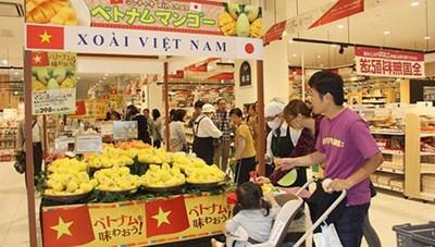 Cầu nối đưa hàng Việt ra thế giới