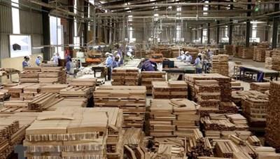 Xuất khẩu đồ gỗ và rừng đang mất dần
