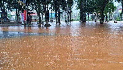 [VIDEO] Mưa lớn và lũ ống gây ngập lụt tại Hà Giang