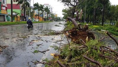 Clip: Sự tàn phá kinh khủng của cơn bão số 9