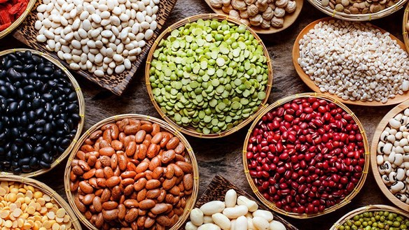 Khả năng chống ung thư tuyệt vời của các loại đậu quen thuộc