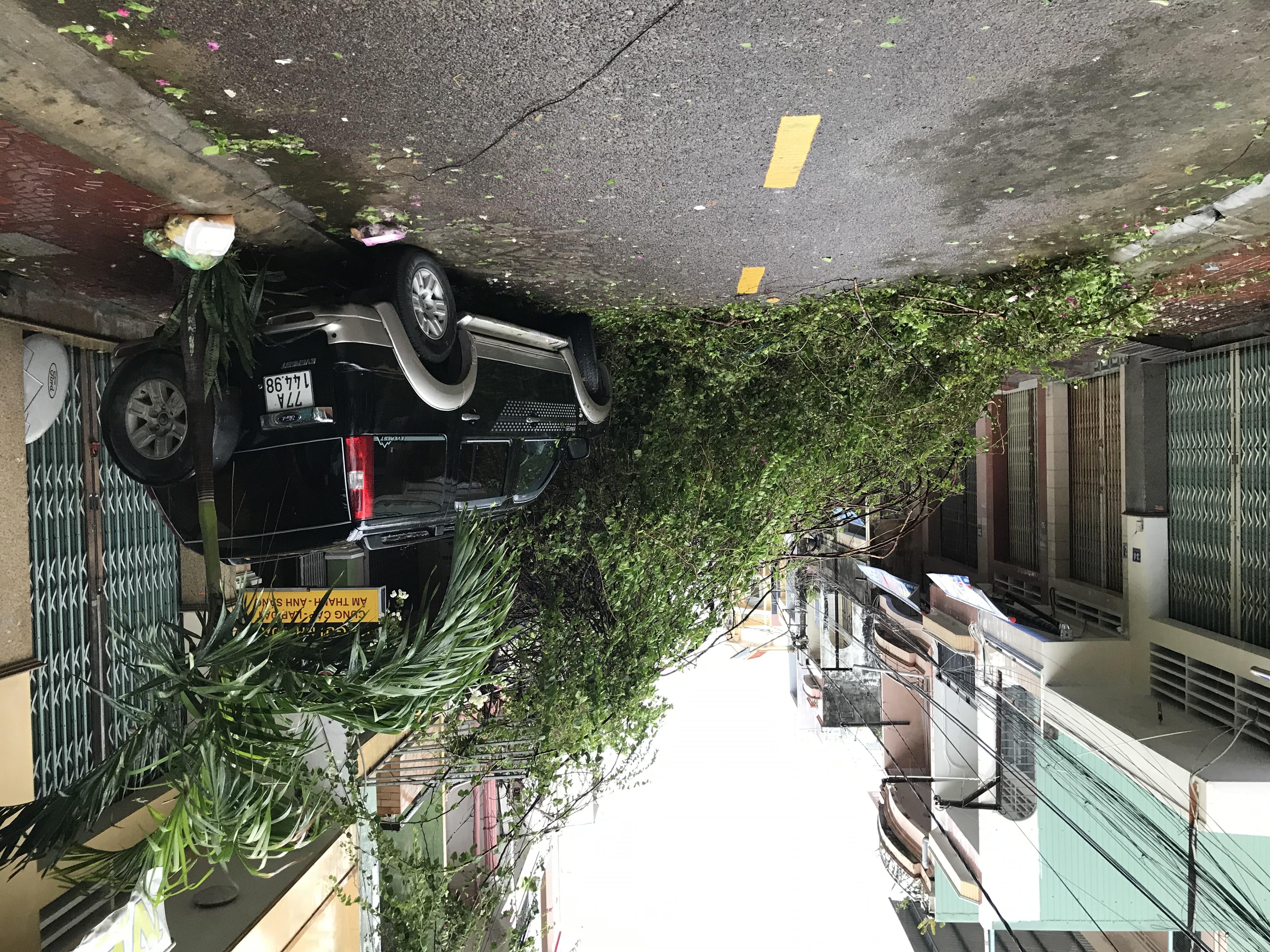 Cây đổ chắn ngang tuyến phố và làm hư hại mtj chiếc xe của người dân tại TP Quy Nhơn.