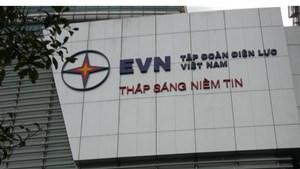 EVN phải trở thành Tập đoàn kinh tế mạnh