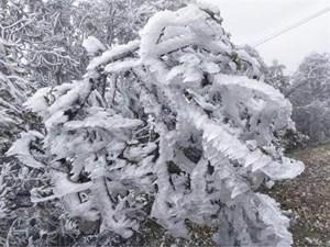 Cuối tuần miền Bắc đón đợt rét đậm mới, khả năng xảy ra mưa tuyết