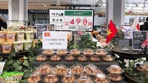Nền kinh tế vượt bão: Bài 3 - Nông sản Việt chiếm lĩnh thị trường thế giới