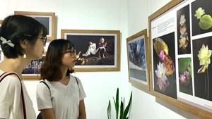 Nhiếp ảnh trẻ năm 2021: Quảng bá hình ảnh đất nước, con người Việt Nam