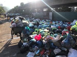 Rác thải ùn ứ gây ô nhiễm môi trường tại TP Hạ Long