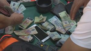 Hàng chục đối tượng tổ chức đá gà ăn tiền trong rẫy cà phê