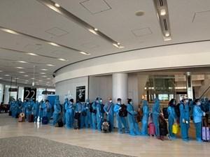 Tiếp tục đưa thêm 225 công dân Việt Nam từ Nhật Bản về nước