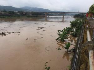 [ẢNH] Cận cảnh lũ lớn trên sông Hồng