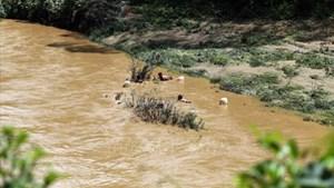 2 bé gái tử vong khi tắm suối
