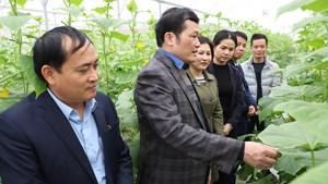 Thường Tín (Hà Nội): 'Về đích' sớm 1 năm trong mục tiêu xây dựng Nông thôn mới