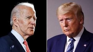 Ông Biden dẫn trước Tổng thống Trump 12 điểm trong cuộc thăm dò trên cả nước