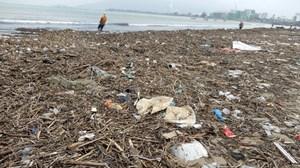 Lượng rác khổng lồ 'bịt kín' bờ biển Đà Nẵng sau bão 13