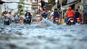 TP Hồ Chí Minh: Triều cường cao hơn 1,7 m, hàng loạt tuyến đường chìm sâu trong nước