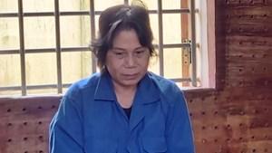 Mẹ ứng 10 triệu thuê người bắt cóc con gái