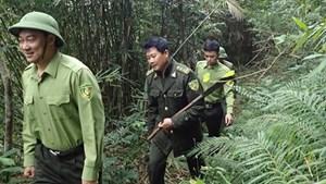 Xung đột trong quản lý đất ở Vườn Quốc gia Bái Tử Long