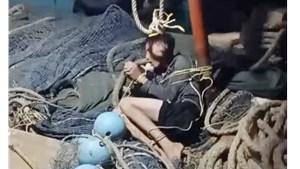 Cà Mau: Điều tra nghi án tài công chém, đẩy 4 ngư dân xuống biển